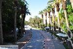 Kos stad (Kos-stad) | Eiland Kos | Griekenland foto 14 - Foto van De Griekse Gids