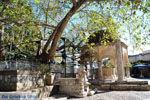 Kos stad (Kos-stad)   Eiland Kos   Griekenland foto 24 - Foto van De Griekse Gids