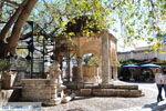 Kos stad (Kos-stad) | Eiland Kos | Griekenland foto 25 - Foto van De Griekse Gids