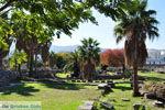 Kos stad (Kos-stad) | Eiland Kos | Griekenland foto 29 - Foto van De Griekse Gids