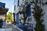 Kos stad (Kos-stad)   Eiland Kos   Griekenland foto 54 - Foto van De Griekse Gids