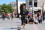 Kos stad (Kos-stad) | Eiland Kos | Griekenland foto 83 - Foto van De Griekse Gids
